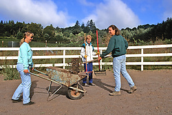 Barbara Linsley, Sheila Field & Sarah Borrey Cleaning Pasture