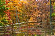WVA colorful autumn trees behind rail fence