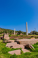 The obelisks of Axum (Aksum), including the Obelisk of Axum and King Ezana's Stela, Northern Stelae Park, Axum, Ethiopia.