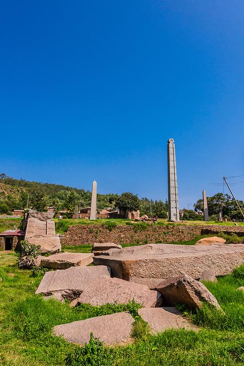 The obelisks of Axum (Aksum), including the Obelisk of Axum and King Ezana's Stela, Northern Stelae Park, Axum, Ethiopia.