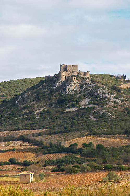 The Chateau d'Aguilar Cathar hilltop fortress dating from the 11th and 12th century on the border to Corbieres. Fitou. Languedoc. The ruins of a chateau fortress. France. Europe. Vineyard.