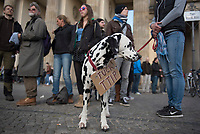 DEU, Deutschland, Germany, Berlin, 18.04.2015: Ein Hund mit Schild FUCK TTIP bei der Demonstration gegen die geplanten Freihandelsabkommen TTIP/CETA zwischen der EU und den USA/Kanada.