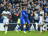 Football - 2018 / 2019 Premier League - Cardiff City vs. Fulham<br /> <br /> Cardiff celebrate victory, Fulham look dejected , at Cardiff City Stadium.<br /> <br /> COLORSPORT/WINSTON BYNORTH