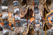Pieces of freshly-caught salmon are slow-cooked and smoked on skewers by a wood fire during the 61st Annual Lummi Stommish Water Festival at the Lummi Indian Reservation, Washington on June 24, 2007.