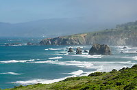Mendocino Coast, California