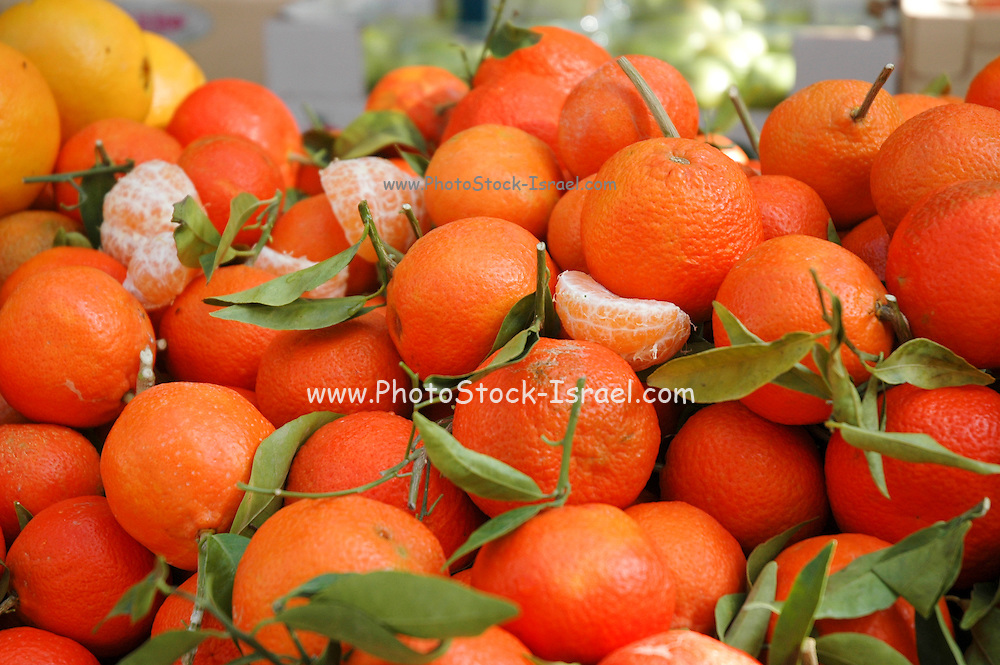 Israel, Haifa, a fruit stall in the market a stack of fresh Mandarins