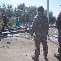 Army soldiers stand guard as illegal migrants cross the border between Serbia and Hungary near Roszke (about 174 km South of capital city Budapest), Hungary on September 14, 2015. ATTILA VOLGYI