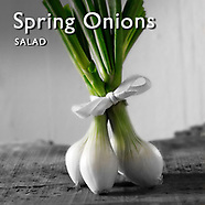 Spring Onions Pictures   Spring Onions Food Photos Images & Fotos