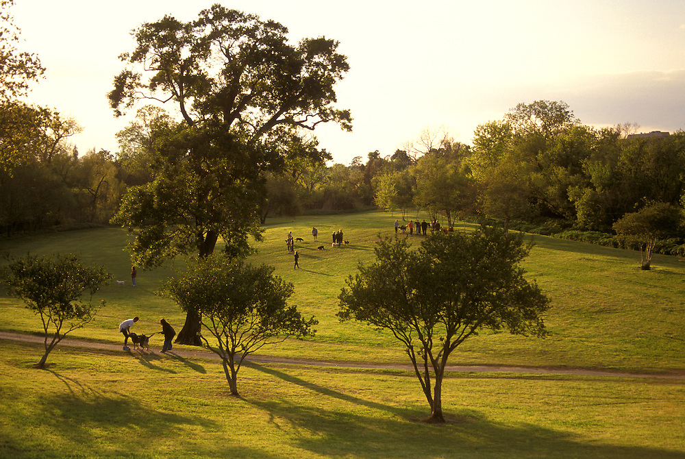"The ""Dog Park"" at Buffalo Bayou."