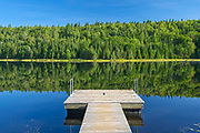 Tree reflection and dock in Lac Modène<br />