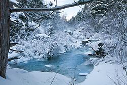 Icy landscape, Palisades Creek, Swan Valley, Idaho