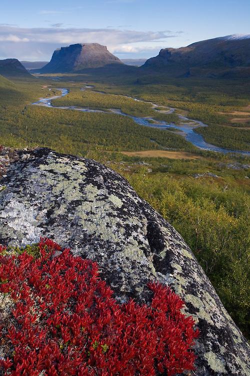 View along Rapadalen towards Tjahkkelij, Sarek National Park, Laponia World Heritage Site, Sweden