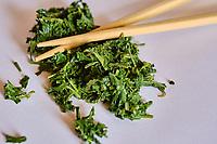 Japon, île de Honshu, région de Kansaï, thé gyokuro // Japan, Honshu island, Kansai region, gyokuro tea