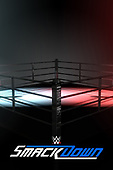 February 26, 2021 (USA): WWE SmackDown On Fox