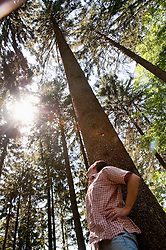 Mature man looking up to treetops in Bavaria Forest