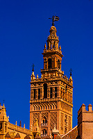 The Giralda Tower and the Seville Cathedral, Seville, Andalusia, Spain.