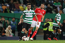 February 3, 2019 - Lisbon, PORTUGAL, Portugal - Bruno Fernandes of Sporting CP (L) vies for the ball with Andreas Samaris of SL Benfica (R) during the League NOS 2018/19 footballl match between Sporting CP vs SL Benfica. (Credit Image: © David Martins/SOPA Images via ZUMA Wire)