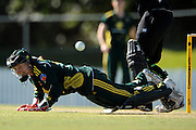 BRISBANE, AUSTRALIA - JUNE 16: Jodie Fields of Australia dives for the ball during game three of the women's one day international series between Australia and New Zealand at Allan Border Field on June 16, 2011 in Brisbane, Australia.  (Photo by Matt Roberts/Getty Images)