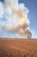 Crop fire near Winifred Montana