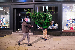 """© Licensed to London News Pictures . 16/12/2017. Manchester, UK. A man with a Christmas tree navigates his way along Deansgate . Revellers out in Manchester City Centre overnight during """" Mad Friday """" , named for historically being one of the busiest nights of the year for the emergency services in the UK . Photo credit: Joel Goodman/LNP"""