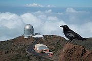 The telescopes of the Roque de los Muchachos Observatory in the Caldera de Taburiente National Park in La Palma, Canary Islands, Spain. La Palma, also San Miguel de La Palma, is the most north-westerly Canary Island in Spain. La Palma has an area of 706 km2 making it the fifth largest of the seven main Canary Islands. Caldera de Taburiente National Park Spanish: Parque Nacional de la Caldera de Taburiente is a national park on the island of La Palma, Canary Islands, Spain. It contains the enormous expanse of the Caldera de Taburiente, once believed to be a huge crater, but nowadays known to be a mountain arch with a curious crater shape, which dominates the northern part of the island. It was designated as a national park in 1954. The caldera is about 10 km across, and in places the walls tower 2000 m over the caldera floor.