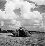 0723-003.  Illinois agricultural scene, 1940s,
