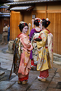 A group of Geisha stops and looks around on a walk through an alley on their way to an appointment in Kyoto, Japan.