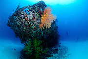 """The coral encrusted stern of the """"cross wreck"""", a Japanese coaster sunk in WW2. Manokwari, West Papua"""