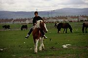 Boys with their horses on the Ballymun estate, Dublin