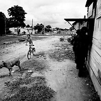 A young girl and her pet dog rush to get home before curfew in one of Colombias most dangerous towns. Saravena police station was attacked 85 times in one year and gunfights, grenade or bombs attacks and assassinations are common occurrences.