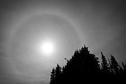Sunburst Photographed In Black and White, Hurricane Ridge, Olympic National Park, Washington State (2009)