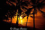 sunset at Cane Bay,<br /> St. Croix, U.S. Virgin Islands, West Indies<br /> ( Caribbean Sea )