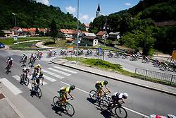 Peloton during 4th Stage Brezice - Novo Mesto (155,8 km) at 20th Tour de Slovenie 2013, on June 16, 2013, in Brezice, Slovenia. (Photo by Urban Urbanc / Sportida.com)