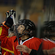 The Chinese bench celebrate a goal during the China V New Zealand match during the 2012 IIHF Ice Hockey World Championships Division 3 held at Dunedin Ice Stadium. Dunedin, Otago, New Zealand. 21st January 2012. Photo Tim Clayton