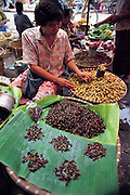 A market-place vendor displays banana leaves covered with maeng man for sale, the bugs are female giant winged red ants and are eaten stir-fried, Chiang Mai, Thailand. (Man Eating Bugs page 41)