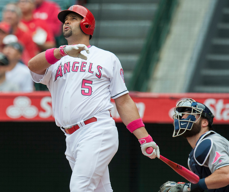 Albert Pujols watches his sac fly in the first inning against the Tampa Bay Rays Sunday at Angel Stadium.<br /> <br /> ///ADDITIONAL INFO:   <br /> <br /> angels.0509.kjs  ---  Photo by KEVIN SULLIVAN / Orange County Register  --  5/8/16<br /> <br /> The Los Angeles Angels take on the Tampa Bay Rays at Angel Stadium Sunday.<br /> <br />  5/8/16