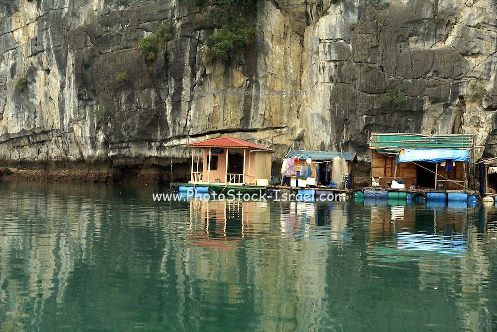 Vietnam, Halong Bay Floating Fishing Village