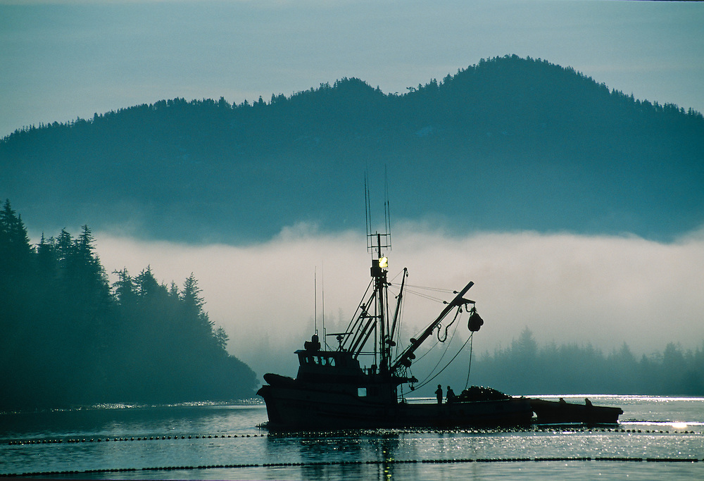 Alaska, Prince William Sound.  Salmon commercial fishing boat waiting to set the nets in morning fog.