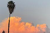 News-California Wildfires-Aug 15, 2020