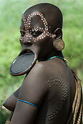 Young Woman with clay lip plate and face painted, showing ceremonial scars, Mursi Tribe, Mago National Park, Lower Omo Valley, Ethiopia, portrait, person, one, tribes, tribal, indigenous, peoples, Southern, ethnic, rural, local, traditional, culture, prim
