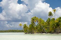 , French Polynesia - 10/23/2006 - Blue Lagoon, Rangiroa, Tuamotu Archipelago, French Polynesia.(Photo by Sharpshooters/VWPics) *** Please Use Credit from Credit Field *** *** Please Use Credit from Credit Field ***