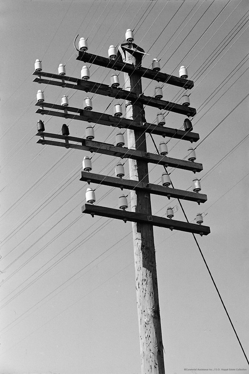 Road to Barmouth, Telegraph Poles, Wales, 1937