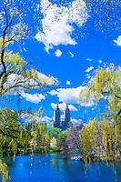 Central Park in springtime, New York, New York USA.