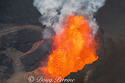 lava originating from Kilauea Volcano, erupts from fissure 8 in Leilani Estates subdivision, near Pahoa, fountaining over 70m high into the air and sending a river of lava toward Kapoho, Puna District, Hawaii ( the Big Island ), Hawaiian Islands, U.S.A.