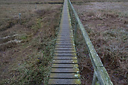 Wooden walkway across marshland on a cold morning landscape on the Isle of Wight, England, United Kingdom.