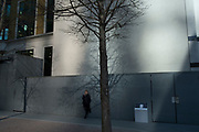 Woman on her cell phone beside a wall with a tree shadow within street scene of light and shadow in the City of London, England, United Kingdom. (photo by Mike Kemp/In Pictures via Getty Images)