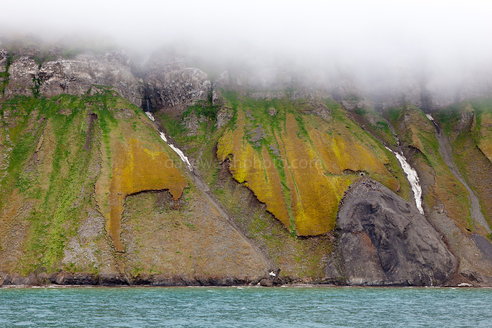 """Clouds on seacliffs, on the coast of Isjforden, Svalbard. The cliffs are marked with the signs of coal mining from the 20th century, and the green summer tundra that grows durig the short summer season - which is lengthening due to climate change. This mage can be licensed via Millennium Images. Contact me for more details, or email mail@milim.com For prints, contact me, or click """"add to cart"""" to some standard print options."""