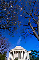 The Jefferson Memorial, Cherry Tree Walk, Tidal Basin, Washington D.C., U.S.A.