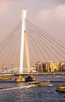From Tsukuda Onasi to Chuo Onashi (Bridge), Sumida River, Tokyo, Japan