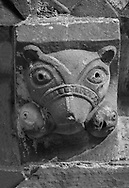 The Stone Bestiary - Black and white photo art print of Norman Romanesque exterior corbel no 30 - sculpture of of a muzzled bears head with two humans in its mouth, their heads poking out either side of its head.  The Norman Romanesque Church of St Mary and St David, Kilpeck Herefordshire, England. Built around 1140 .<br /> <br /> Visit our LANDSCAPE PHOTO ART PRINT COLLECTIONS for more wall art photos to browse https://funkystock.photoshelter.com/gallery-collection/Places-Landscape-Photo-art-Prints-by-Photographer-Paul-Williams/C00001WetsxVxNTo